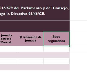 excel_sepe_basereguladora