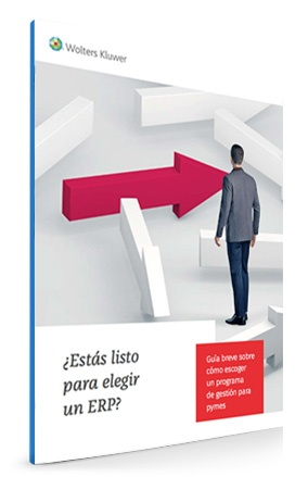 Guía para elegir un software ERP